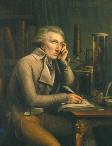 Portrait of Georges Cuvier.jpg