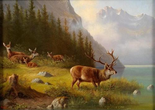 Deer on a Lake.jpg