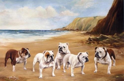 Bulldogs on the Beach.jpg