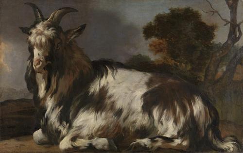 A Lying Goat.jpg