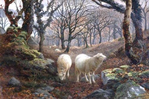 Sheep on a Wooded Hillside.jpg