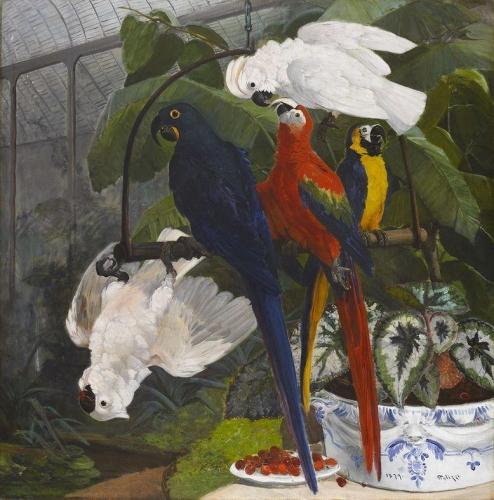Parrots in the Garden of Plants.jpg