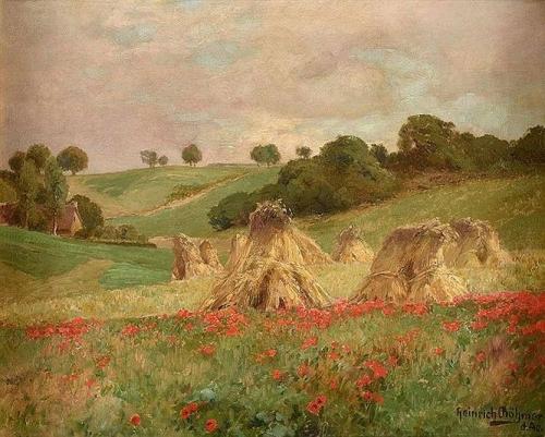 Poppy Field in Bloom.jpg