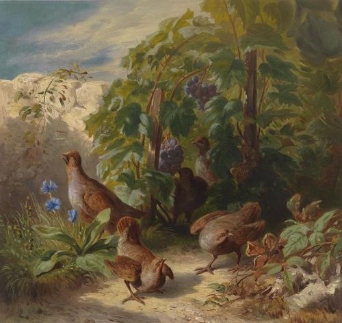 Partridges.jpg