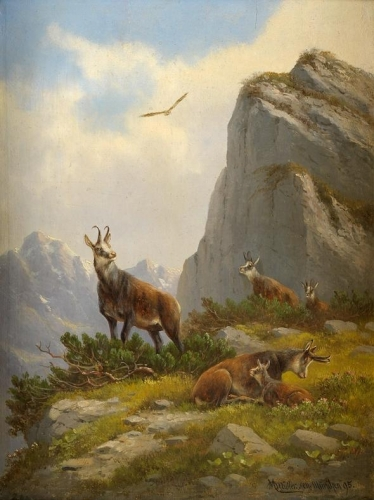 Goats in the Mountains.jpg