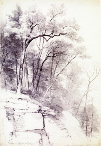 Study of Trees and Rocks Kaaterskill Clove New York.jpg