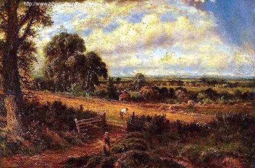 Landscape Cornfield.jpg