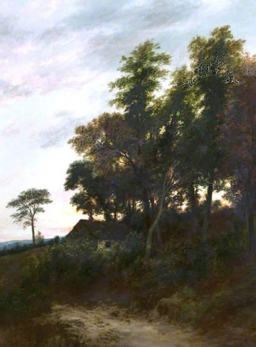 Trees in Perthshire at Dusk.jpg