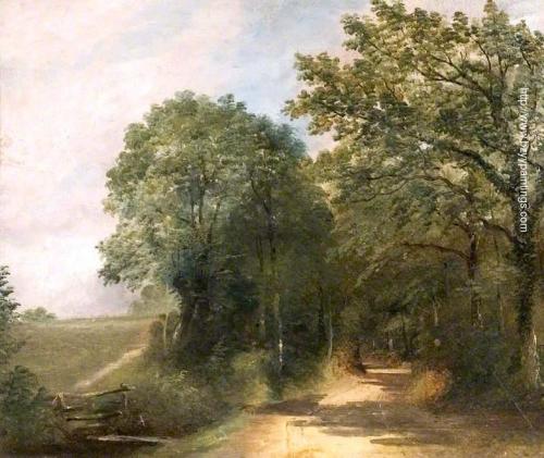 Lane with Stile and Field Dedham Vale.jpg