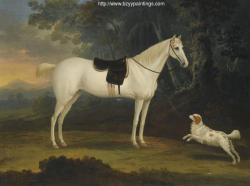 Portrait of Cygnet a grey horse with a white spaniel in a landscape.jpg