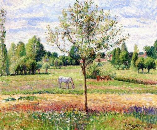Meadow with Grey Horse Eragny.jpg