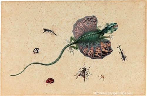 A Flying Dragon and Various Insects.jpg