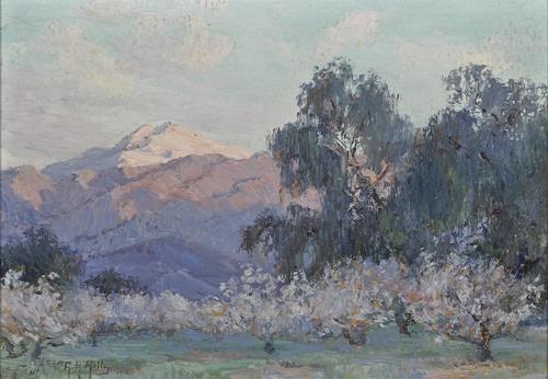 Evening Glow Mt San Jacinto Almond Trees.jpg