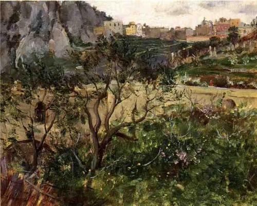 View of Capri.jpg