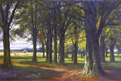 A Beech Wood.jpg